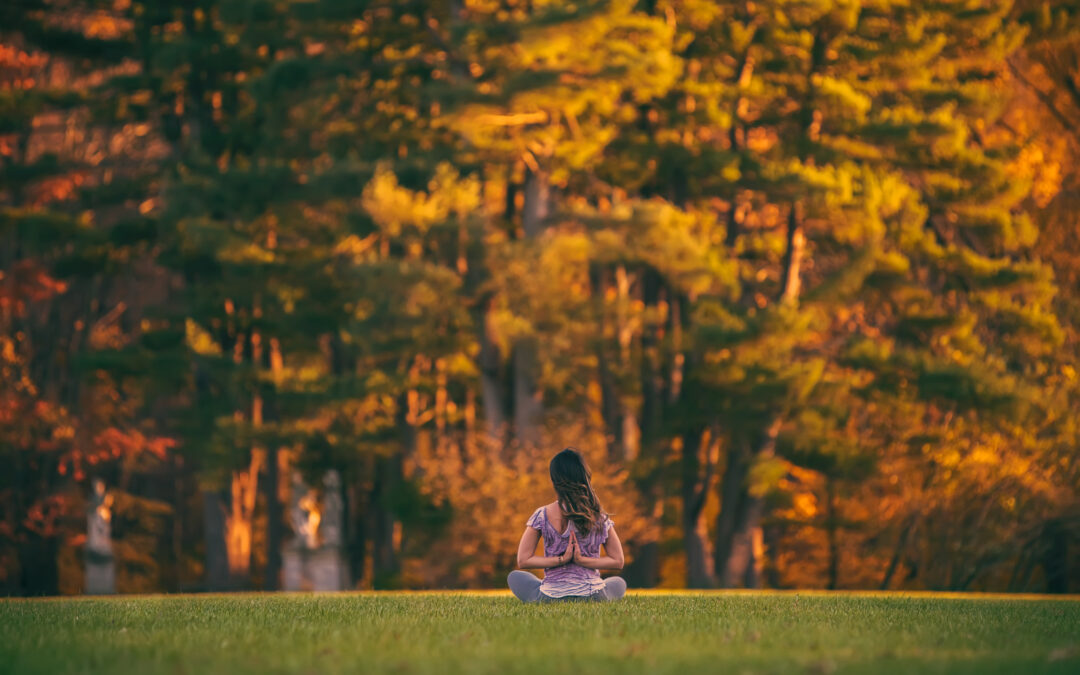 Ayurvedic Living: Self-Care for Fall